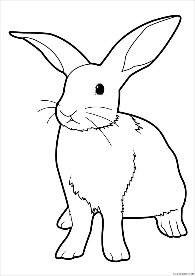 Rabbit Coloring Pages Animal Printable Sheets easter bunny rabbit