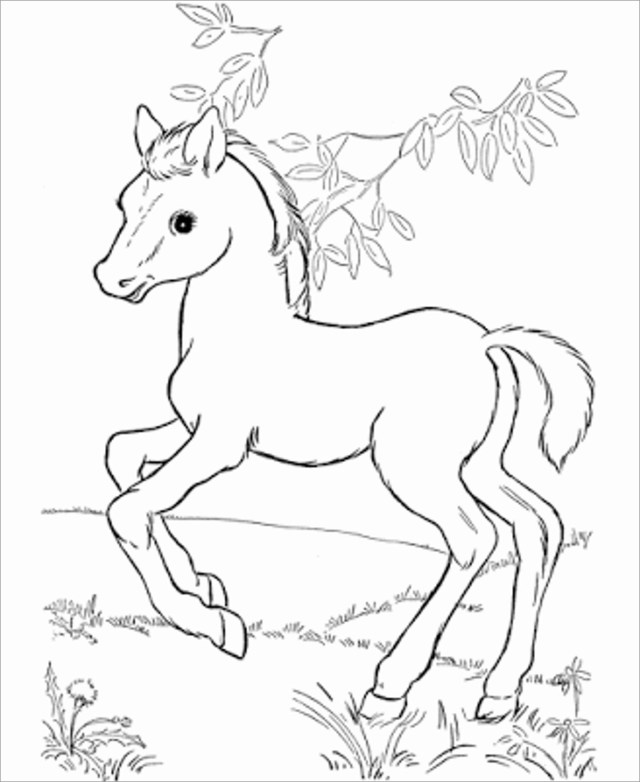 Cute Horse Coloring Page - ColoringBay