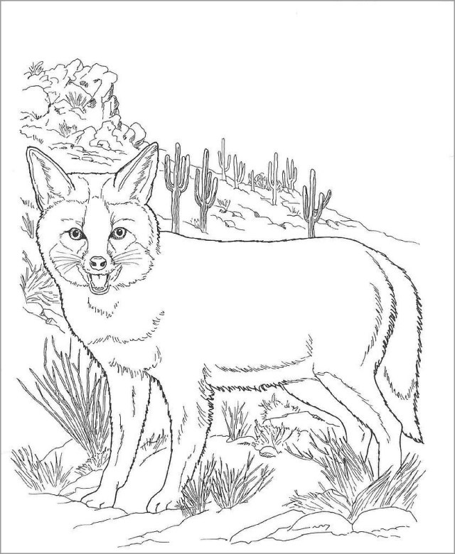 Fox Desert Animals Coloring Pages - ColoringBay