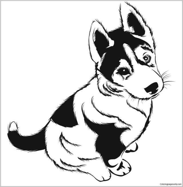 Husky Puppies Coloring Page - ColoringBay