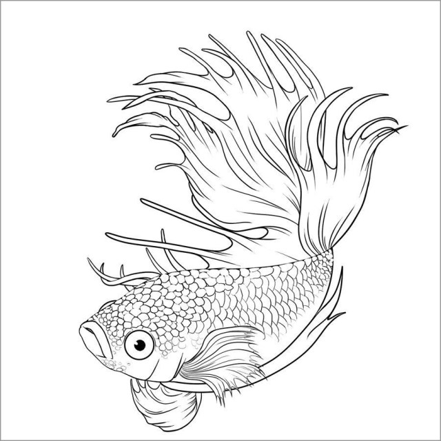 Printable Coloring Page Of Betta Fish - ColoringBay