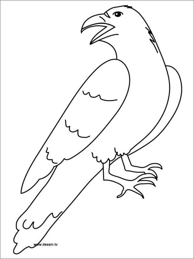 Printable Raven Coloring Page - ColoringBay