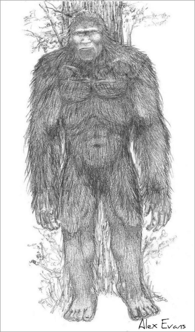 Realistic Bigfoot Coloring Page - ColoringBay