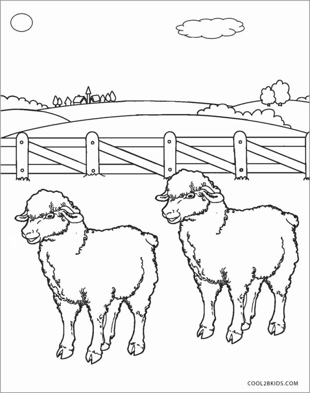 Sheep Coloring Pages for Preschool - ColoringBay