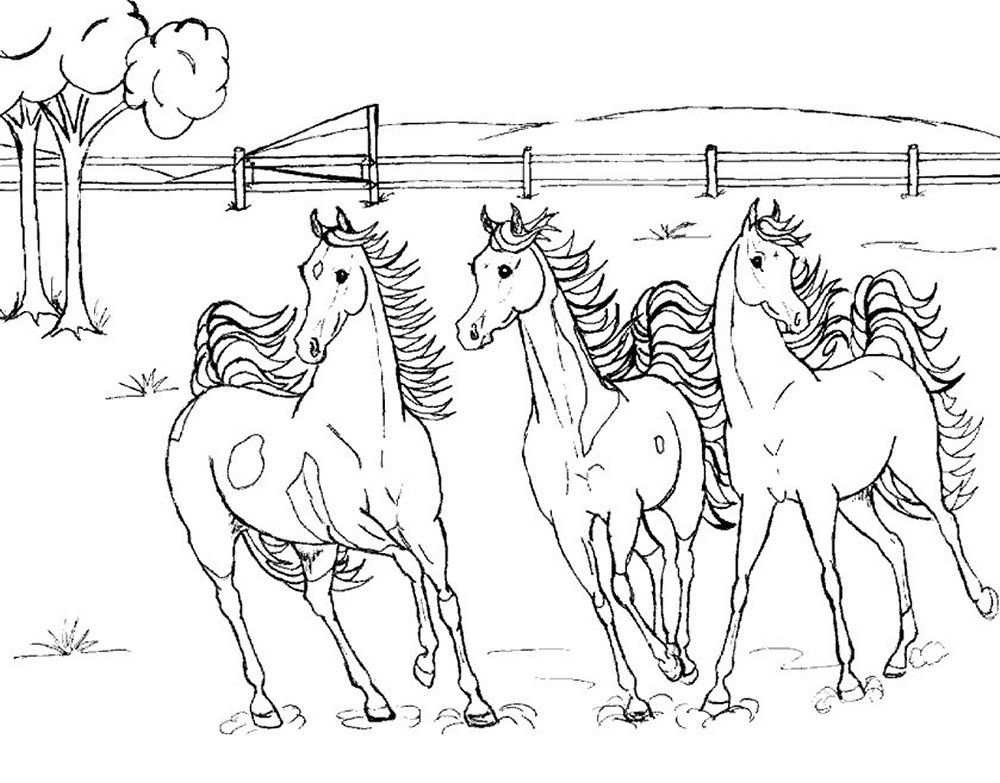 Horse Coloring Games Coloring Home