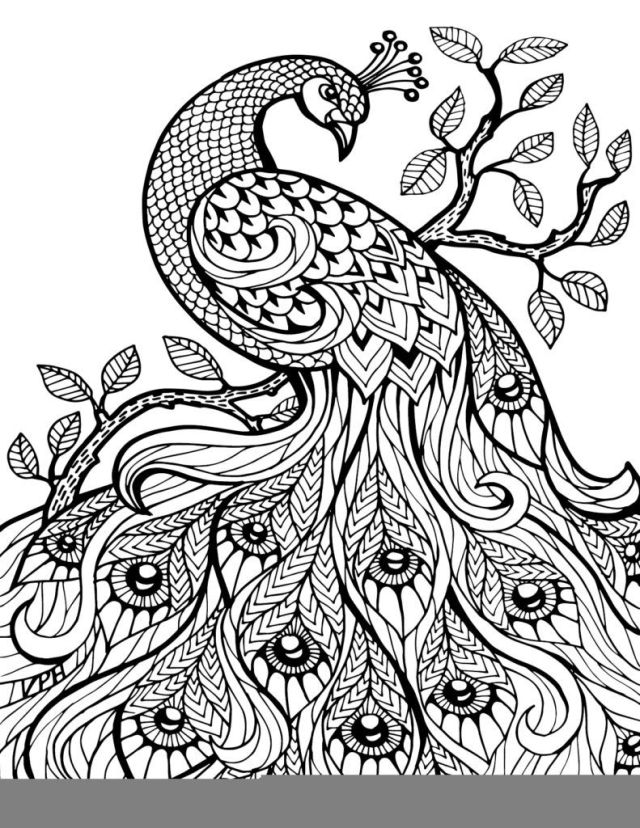 Coloring Pages: Free Printable Coloring Book Pages €  Best Adult
