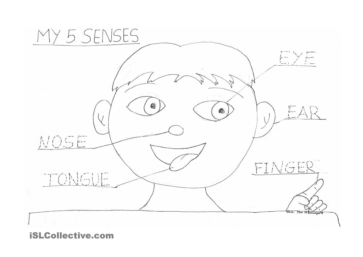 Five Senses Mr Potato Head Printable Sketch Coloring Page