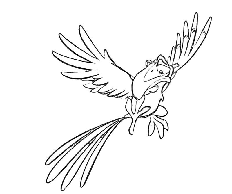 Zazu Coloring Pages Coloring Home