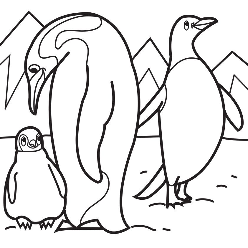 Pictures Of Penguins To Color Coloring Home