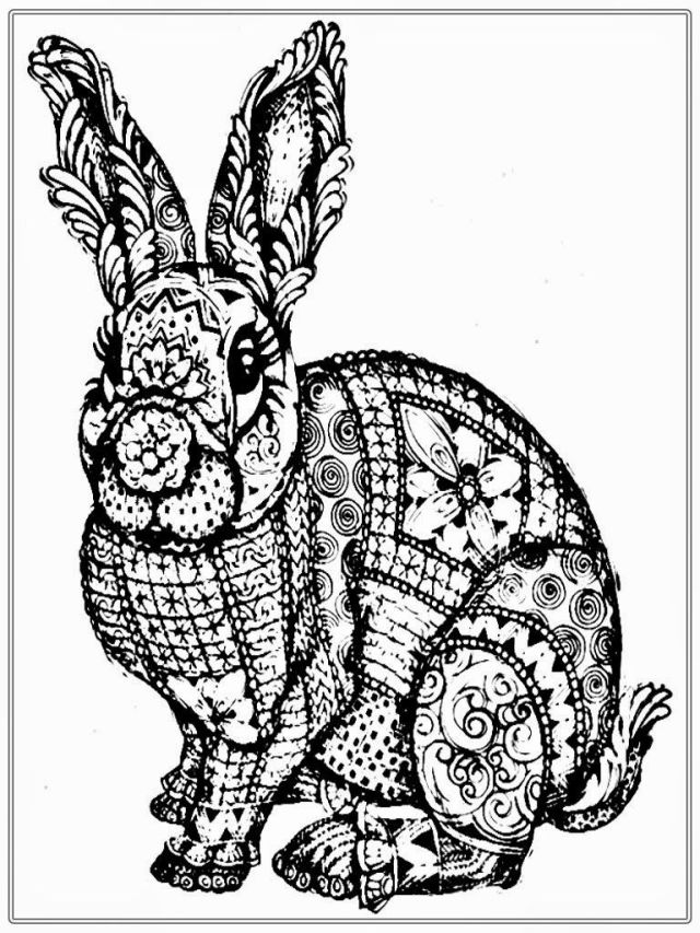 Free Rabbit Coloring Pages For Adult  Realistic Coloring Pages