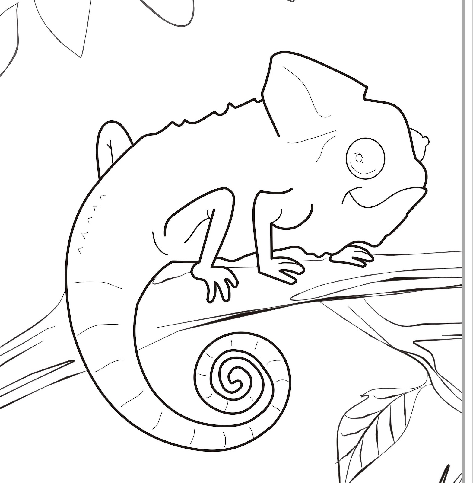 Mixed Up Chameleon Test