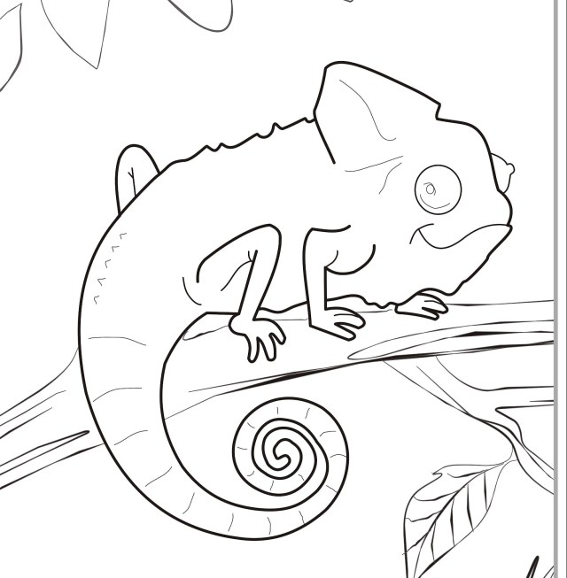 Chameleon Coloring Pages - GetColoringPages.com - Coloring Home