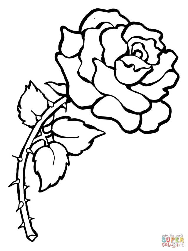 Roses Coloring Pages  Free Coloring Pages - Coloring Home