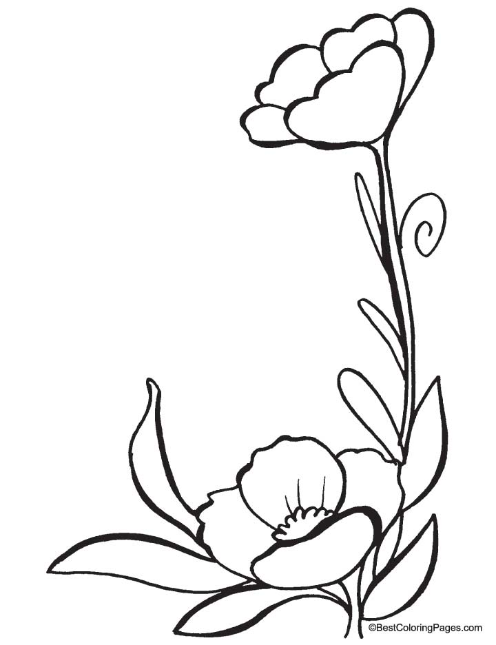 Monster Mutt Coloring Page Coloring Home
