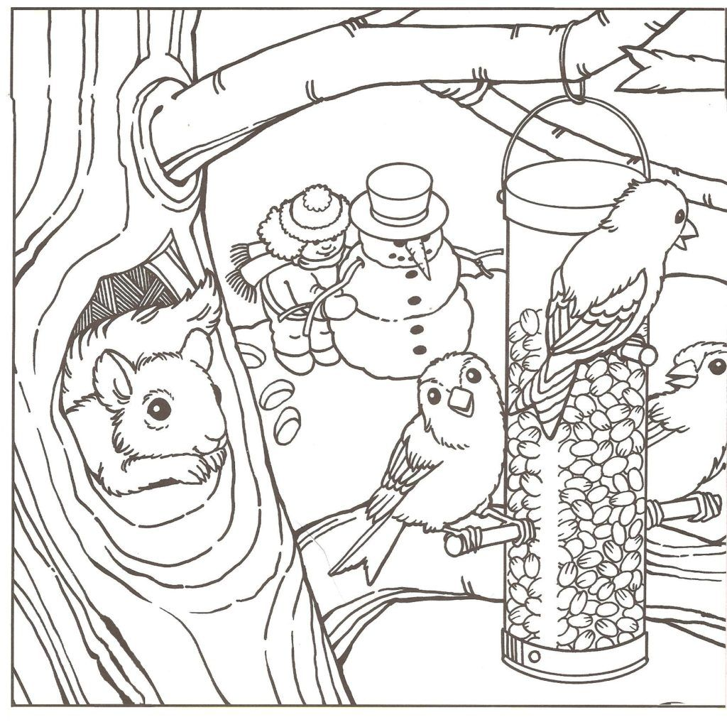 Winter Coloring Pages For Adults - Coloring Home   winter coloring pages adults