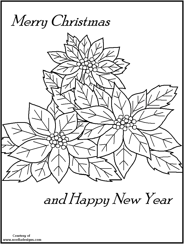 poinsettia picture  coloring home