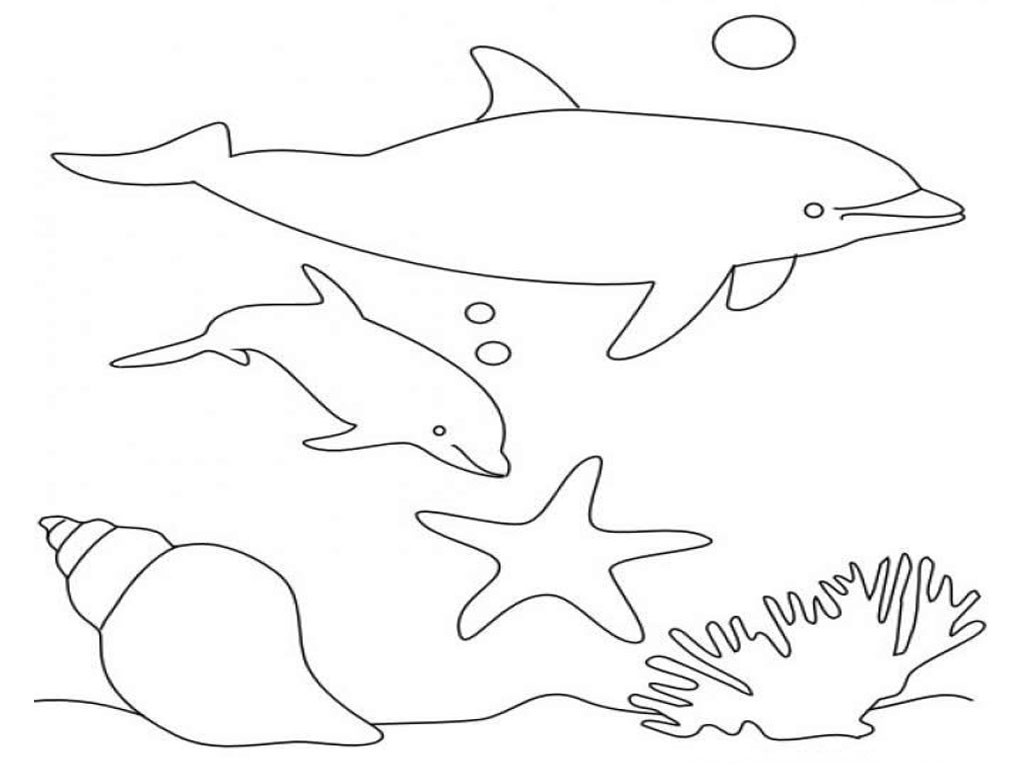 Dolphin Coloring Pages 2 Coloring Kids