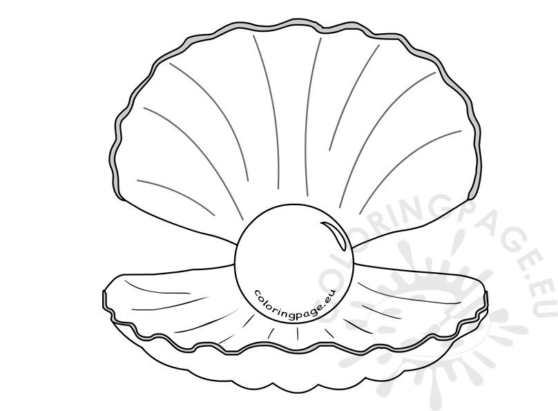shell  pearl clipart kid – coloring page