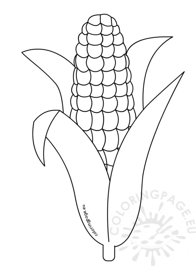 Corn Coloring Page Printable | Coloring Page for kids