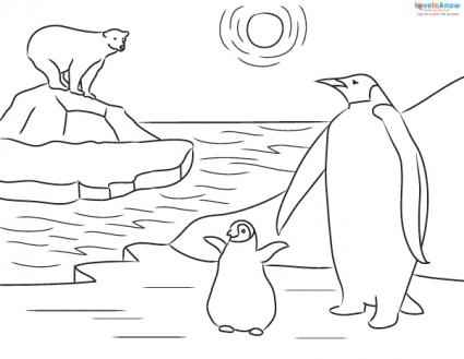 free printable emperor penguin coloring pages - Penguins Coloring Pages Printable