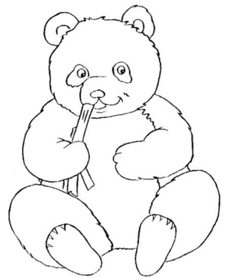 baby panda is eating bamboo coloring page for childrens - Panda Coloring Page