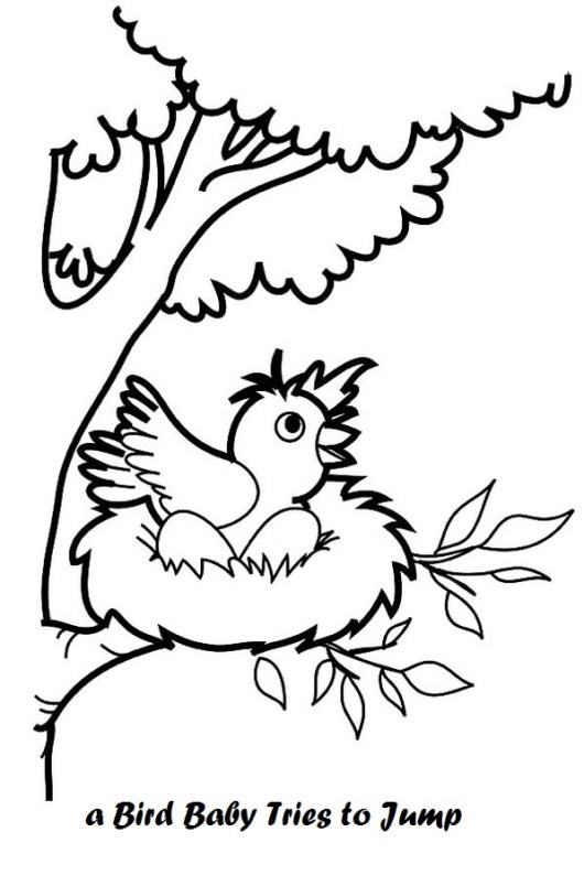 baby-bird-in-nest-coloring-page