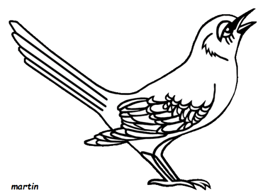 florida_mockingbird_coloring_books