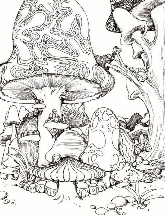 trippy-mushrooms-colouring-page