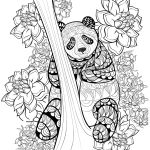 zentangle-panda-coloring-sheet-printable