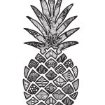 zentangle-pineapple-coloring-page