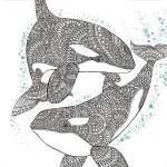 The-Aquarium-Marine-Portraits-Coloring-Book-Dolphin