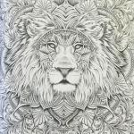 colour-my-sketchbook-coloring-book-lion