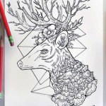 deer-coloring-book