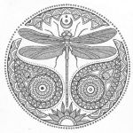 dragonfly-johanna-basford-coloring-book