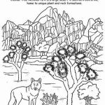 joshua-tree-national-park-coloring-page