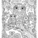 adorable-owls-mandala-background-coloring-page