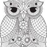 owl-mandala-coloring-sheet