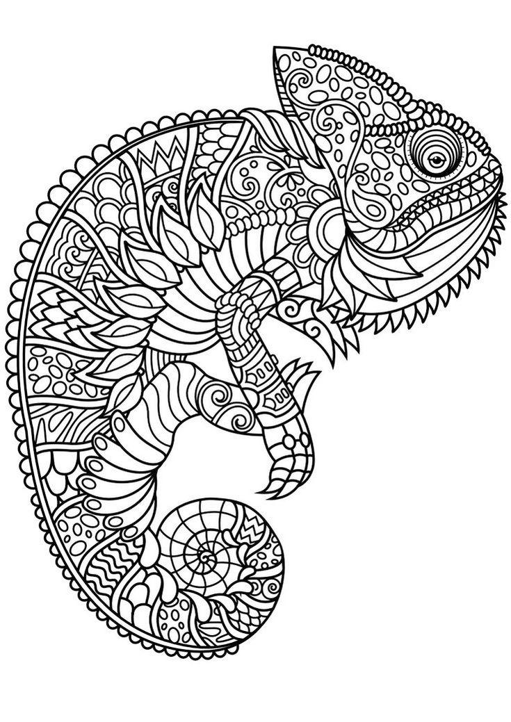 Animal Mandala Chameleon Coloring Pages
