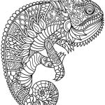 Animal Mandala Chameleon Coloring Pages