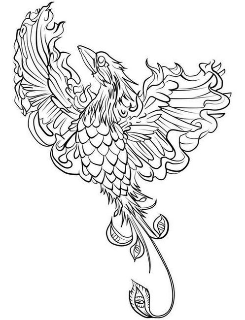 Phoenix Bird Coloring Page To Relieve Stress