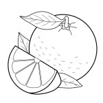 Citrus Printable Coloring Page