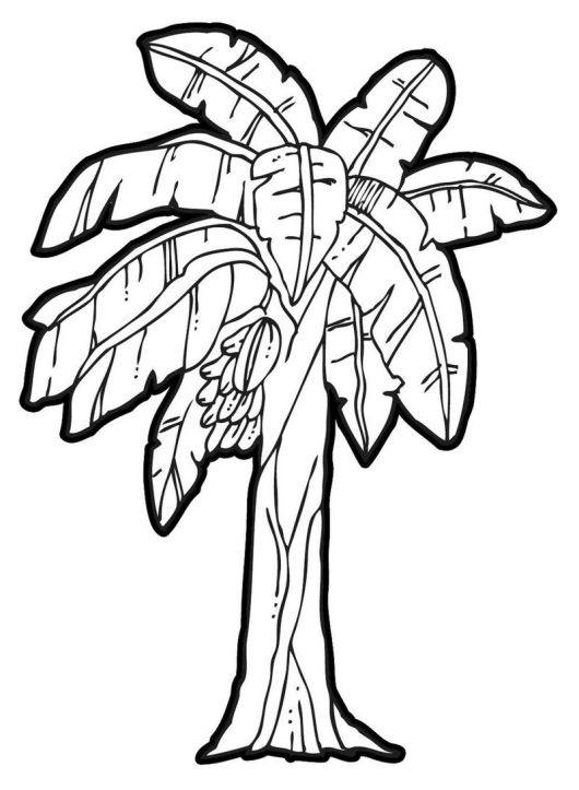 banana tree coloring page printable