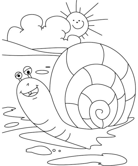 cute snail coloring sheet for little