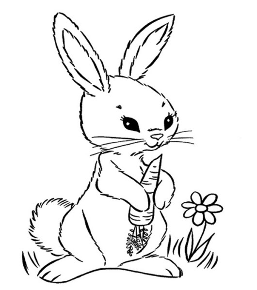 Carrot Coloring Pages for Your