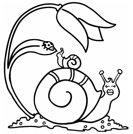 snail and baby coloring picture