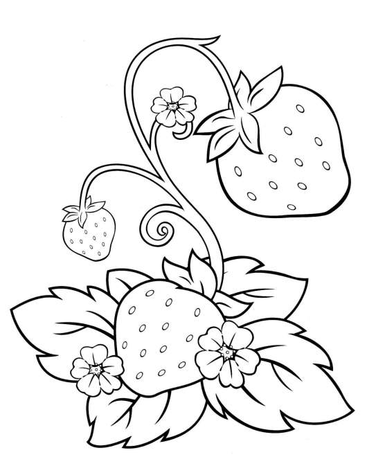 strawberry coloring and activity page