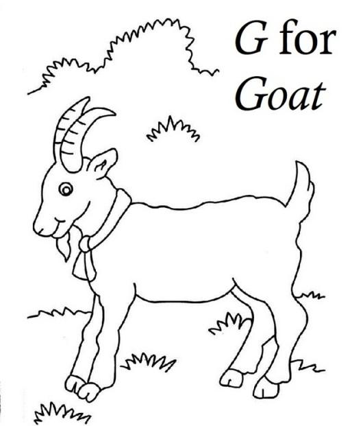 Letter G for Goat Coloring Sheet