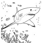 shark ocean coloring page