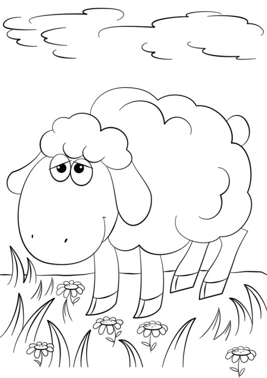 Top 7 Cute Lamb Coloring Pages For Your Little Angels