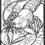 best lobster coloring page